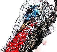Jive Turkey by staceyjohnson