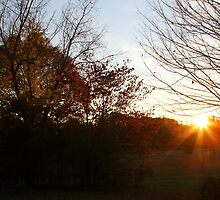 Fall Evening on the Farm by ArdenBryant