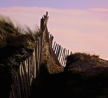 Eroding Fenceline Westward Ho! by GallyThreepwood