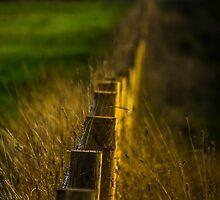 Golden Fence by Jack Steel