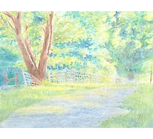 The Shaded Path Photographic Print