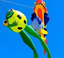 Go Fly a Kite !!! by Nancy Richard