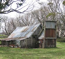Wallace's Hut, Bogong High Plains by Geoffrey Grinton