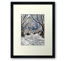 Snowgums Framed Print