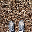 mulch feet by Devan Foster