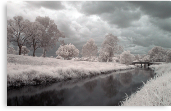 Kedron Brook in Infrared by David James