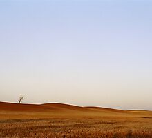 November Dawn, Vinegar Hills by mgimagery