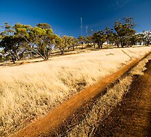 The Climb by Scott G Trenorden