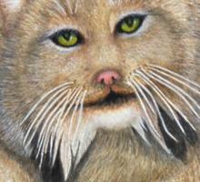 """LINUS""  Canadian Lynx, First Snow Sticker"