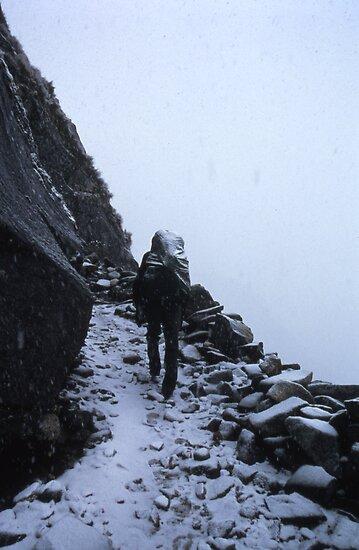 Snow Hiker by adam