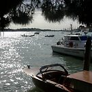 Venice by dopey