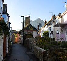 Part of Sherbourne Lane, Lyme,Dorset UK by lynn carter
