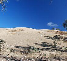 australian summer II by Janet Leadbeater