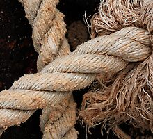 A frayed knot by Thomas Kress