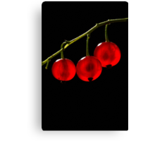 Red Currant Berries Canvas Print