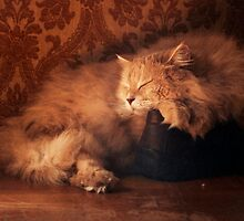 Sleeping on my shoes by Giuseppe Esposito