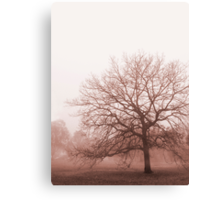Hazy Morning Canvas Print