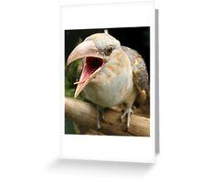 A little bit Cuckoo Greeting Card