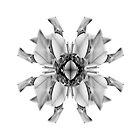 Xscape/Flower 063 by Aspyre