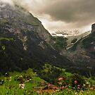 Jungfrau by Murray Newham
