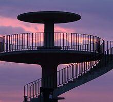 Lookout Tower Geelong by Joe Mortelliti