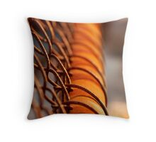 ..weathering time.. Throw Pillow
