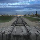 end of the line at birkenau... by Murray Newham