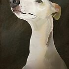Bilbo the Whippet by Carl Conway