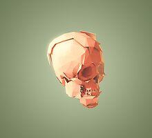 Skull Le Fort by pseudoart