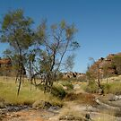 Bungle Bungles,Outback W.A. by Joe Mortelliti