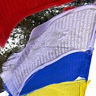 Mountain Prayer Flags by Diane