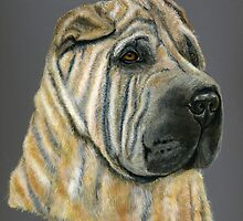 'Kruger' - Shar-Pei by Michelle Wrighton