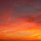 Fiery Skies by Diane