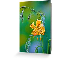 Leopard Lily and Grasses Greeting Card