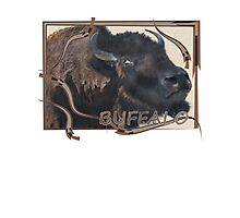 Wild and Woolly, Buffalo, Bison Photographic Print