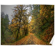 Old Wagon Road Fall Colors Poster
