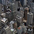 New York City Shapes by Murray Newham