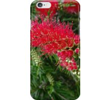 Funky Red Flower iPhone Case/Skin