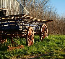 Old Cart, Ascot Victoria by Joe Mortelliti