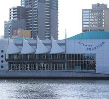 Melbourne Aquarium by Coralie Alison