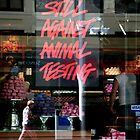 Still Against Animal Testing by julieann