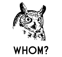Hoo Who Whom Grammar Owl Photographic Print