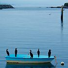 The Harbour Masters.Bermagui,south coast NSW. by matthew maguire