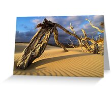 Deadwood Greeting Card
