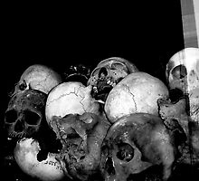 ..to the victims of the Khmer Rouge.. by Murray Newham