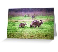 Soggy Roos Greeting Card