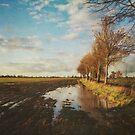 Across the Fields by Sarah Jarrett
