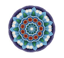 Mandala : Flower Burst  by danita clark