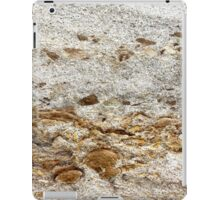 Dolphins at Play iPad Case/Skin
