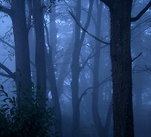 Blue mist by Robyn Lakeman